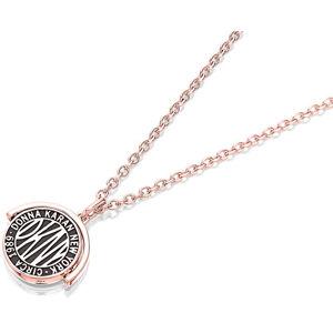 DKNY Pozlacený náhrdelník s oboustranným přívěskem Spinner Token 5520024
