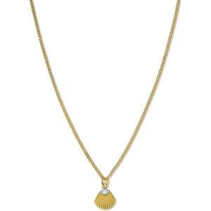 Rosefield Ocelový náhrdelník s mušlí Raye JPNSCG-J268