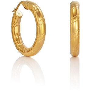 Viceroy Módní pozlacené náušnice kruhy Fashion 6421E11012